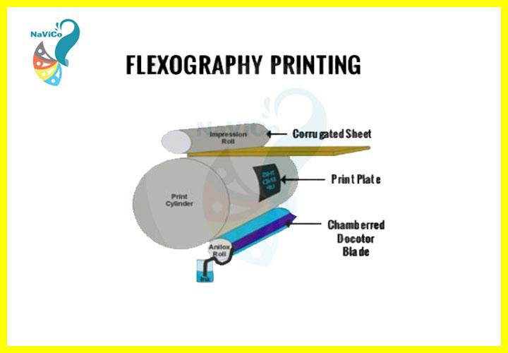 Công nghệ in Flexo - Navico